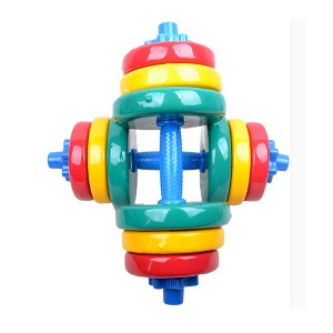 color dumbbell02