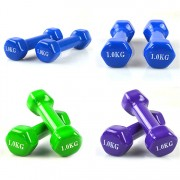 Fitness Workout Jogging Neoprene Coated Dumbbell for Hand Weight