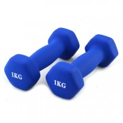 Weight lifitng dumbbell 5kg PVC neoprene vinyl cast iron dumbbell set